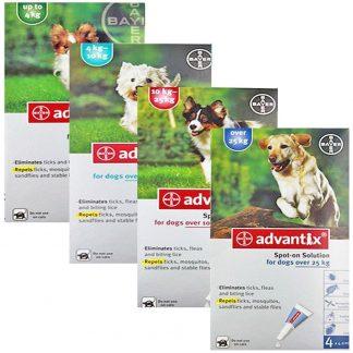 אדוונטיקס טיפות למניעת פרעושים וקרציות לכלבים