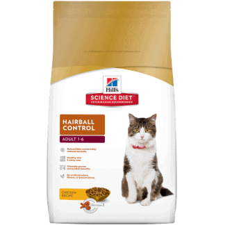 הילס סיינס פלאן חתול בוגר היירבול