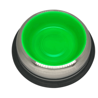 פטקס -קערת נירוסטה עם גומיות בתחתית בצבע ירוק זוהר