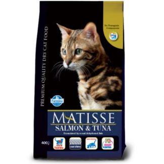 מאטיס אוכל לחתולים